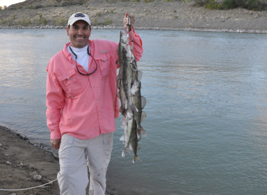 Johnny montoya new mexico driverlayer search engine for Fishing new mexico